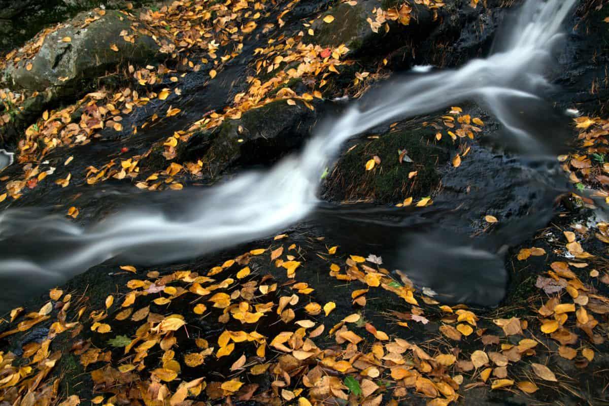 река, вода, водопад, природа, листа, поток, камък