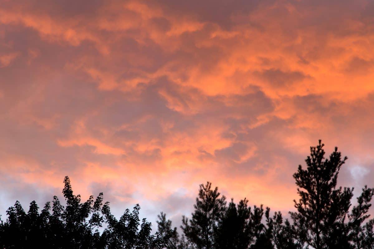 climate, sunset, dawn, nature, sun, sky, atmosphere, cloud, landscape