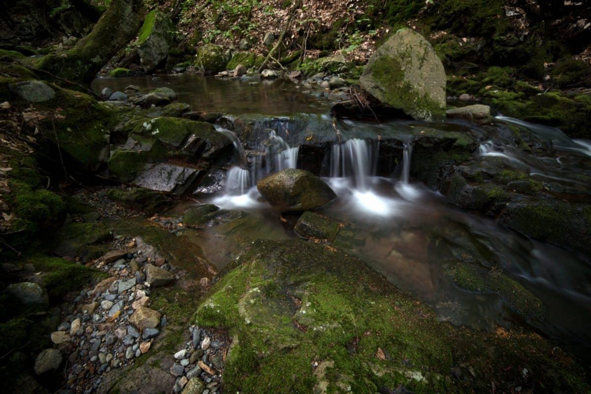 waterfall, river, stream, water, nature, moss, creek, landscape