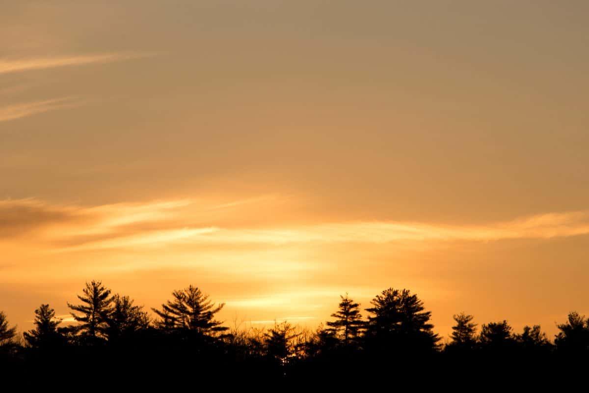 nebbia, natura, crepuscolo, tramonto, alba, sole, cielo, atmosfera, paesaggio