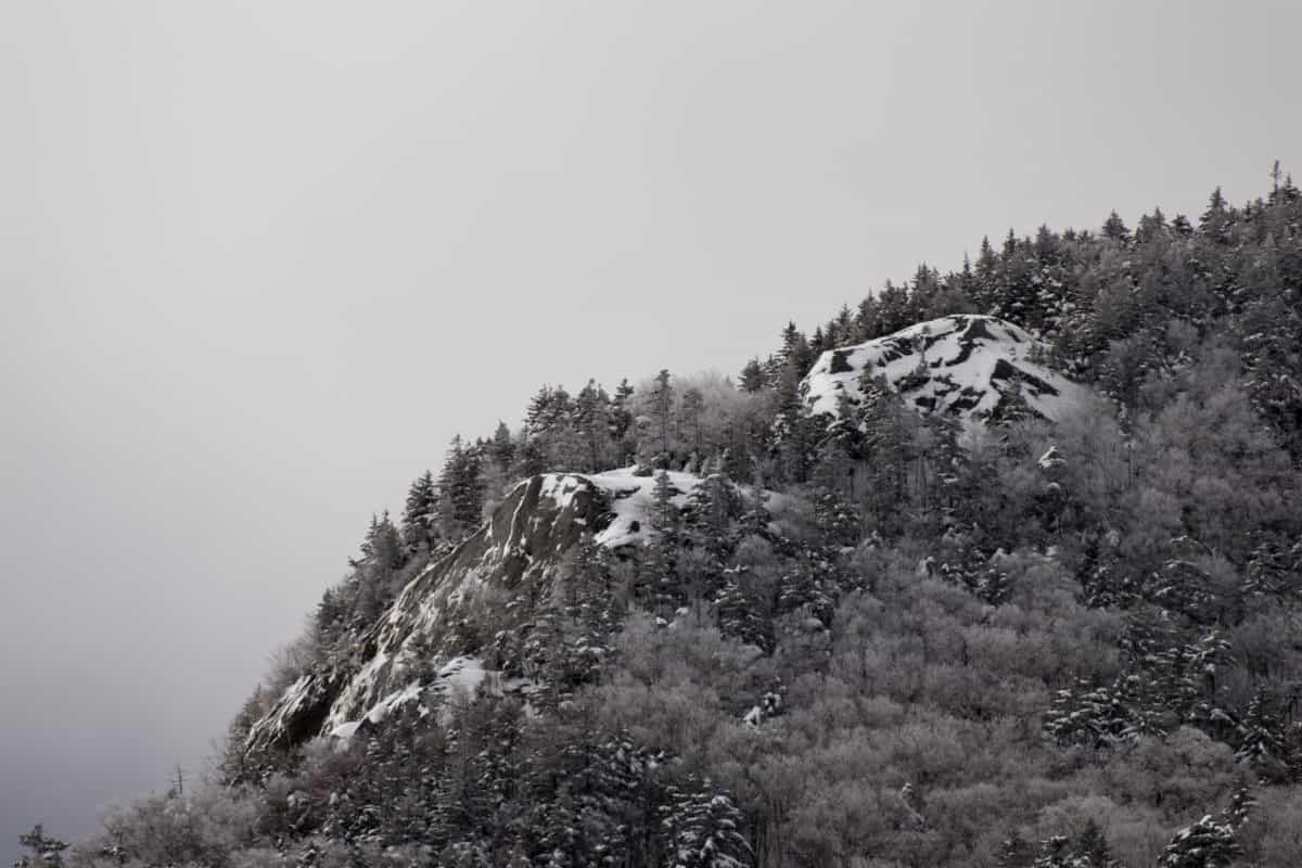 пейзаж, планина, дърво, дърво, мъгла, сняг, студ, зима