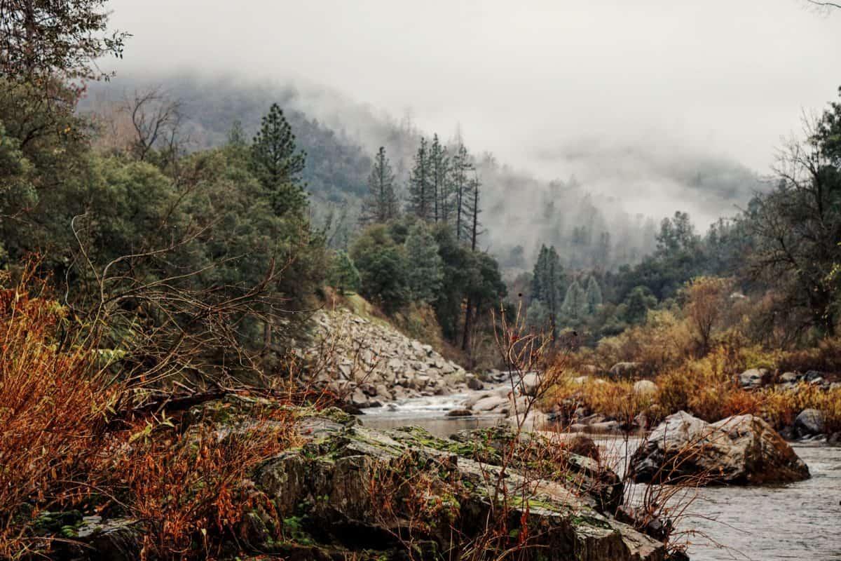 řeka, dřevo, voda, příroda, krajina, strom, Les, hory, sníh