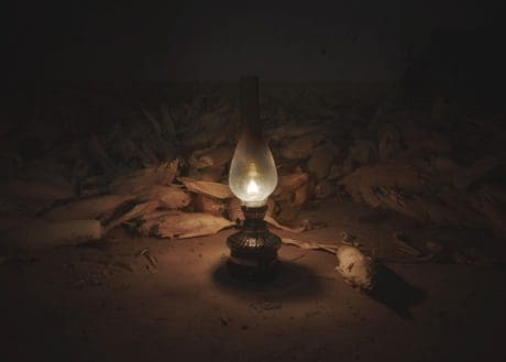 fuego, maíz, llama, lámpara, luz, oscuridad, oscuro
