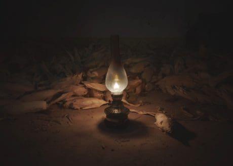 fire, corn, flame, lamp, spotlight, darkness, dark