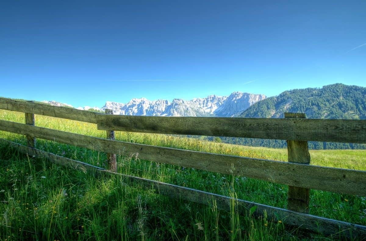 táj, természet, kerítés, ég, fű, mező, nyári, fa