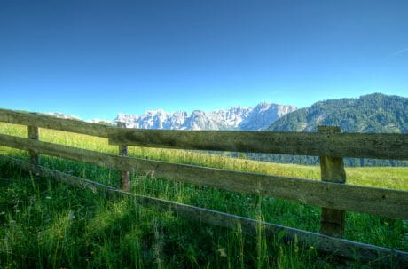 landscape, nature, fence, sky, grass, field, summer, tree