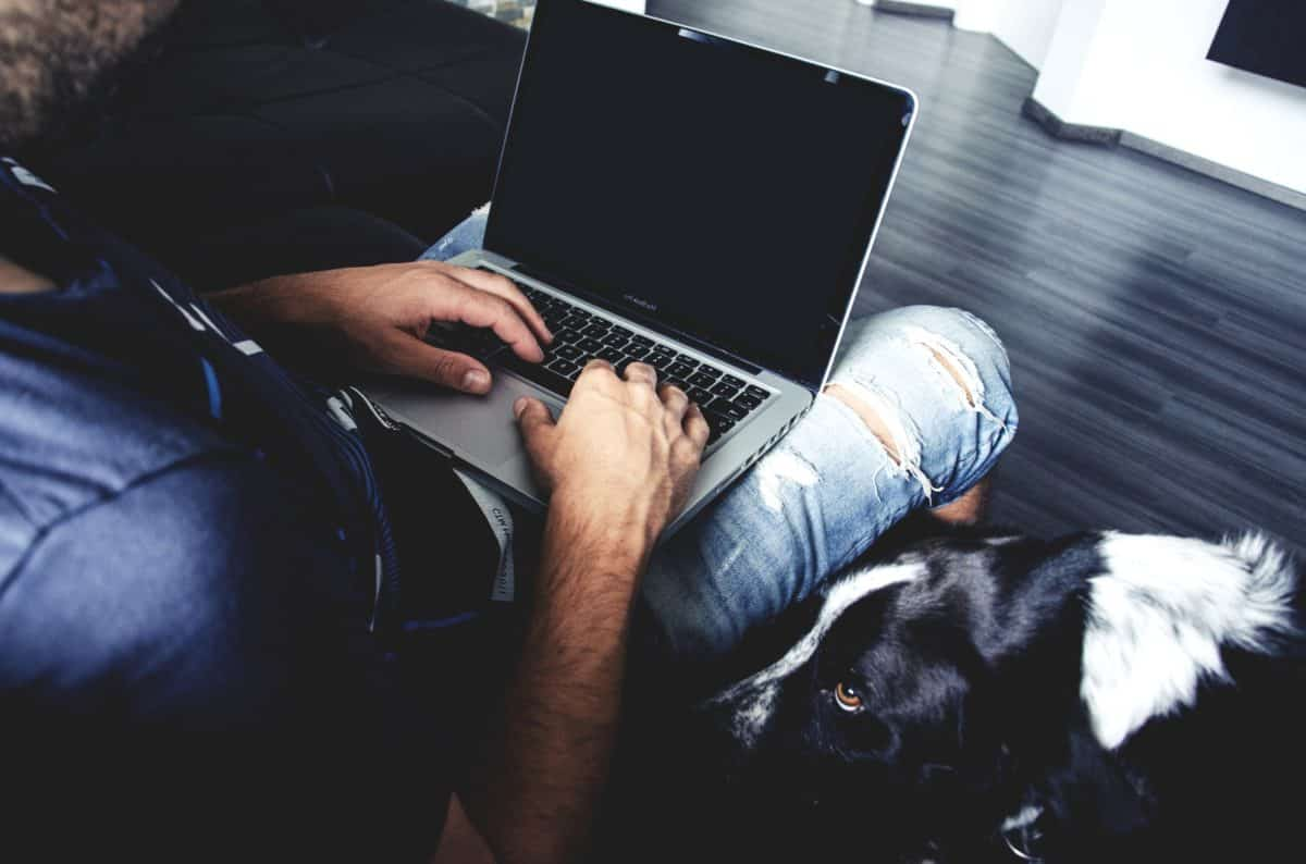 mennesker, bærbar computer, notebook, person, programmør, indendørs