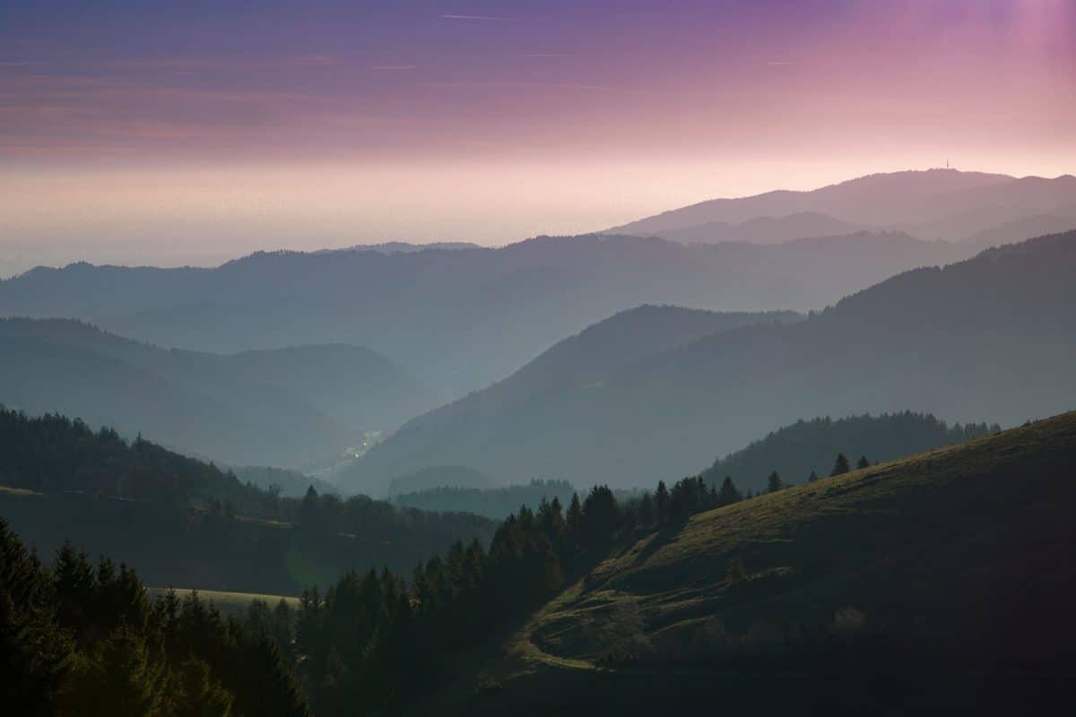brouillard, paysage, nature, ciel, montagne, neige, forêt, vallée