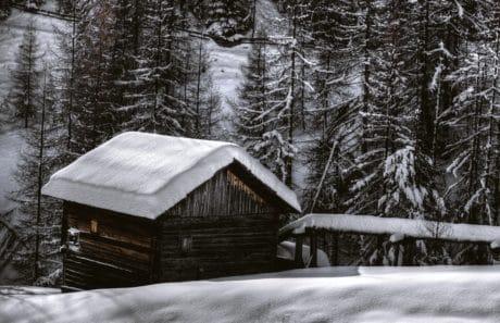 maison de plain-pied, arbre, froid, bois, gel, hiver, neige, grange, structure, plein air
