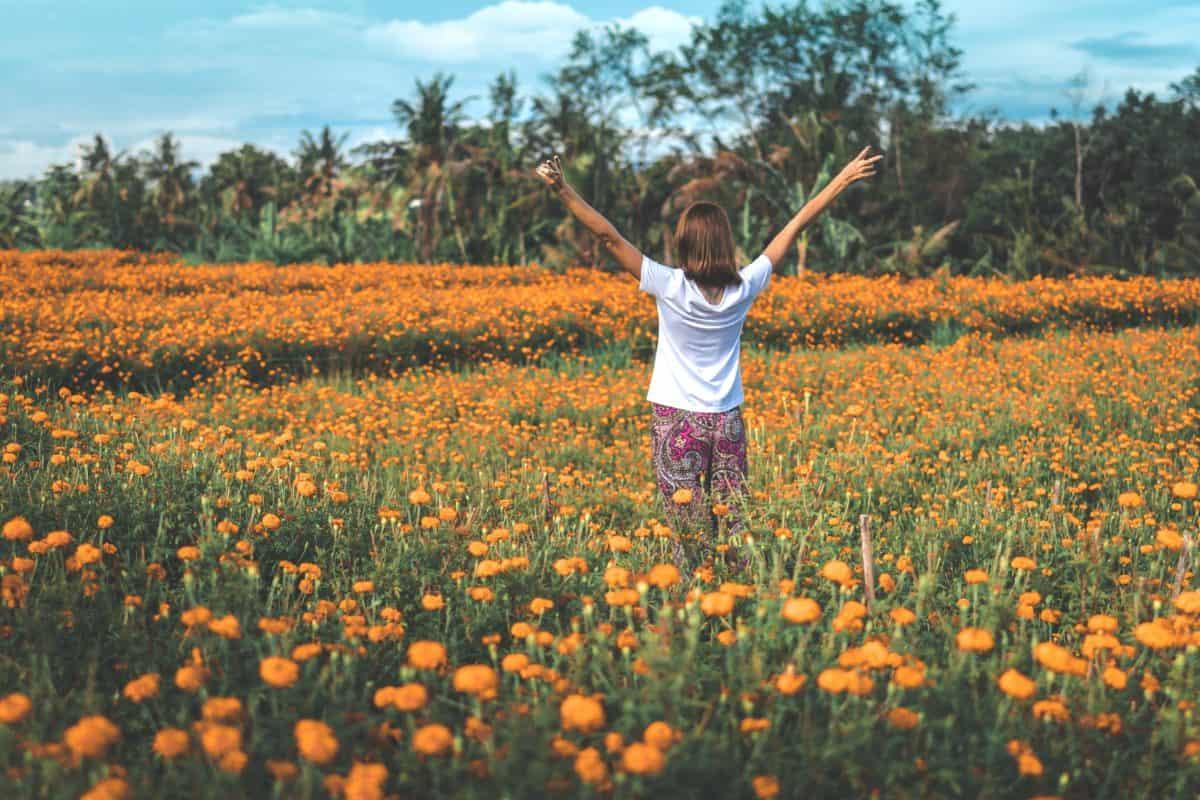 jeune femme, meadow, fleur, ciel, champ, été, Prairie, tournesol, herbe, joie