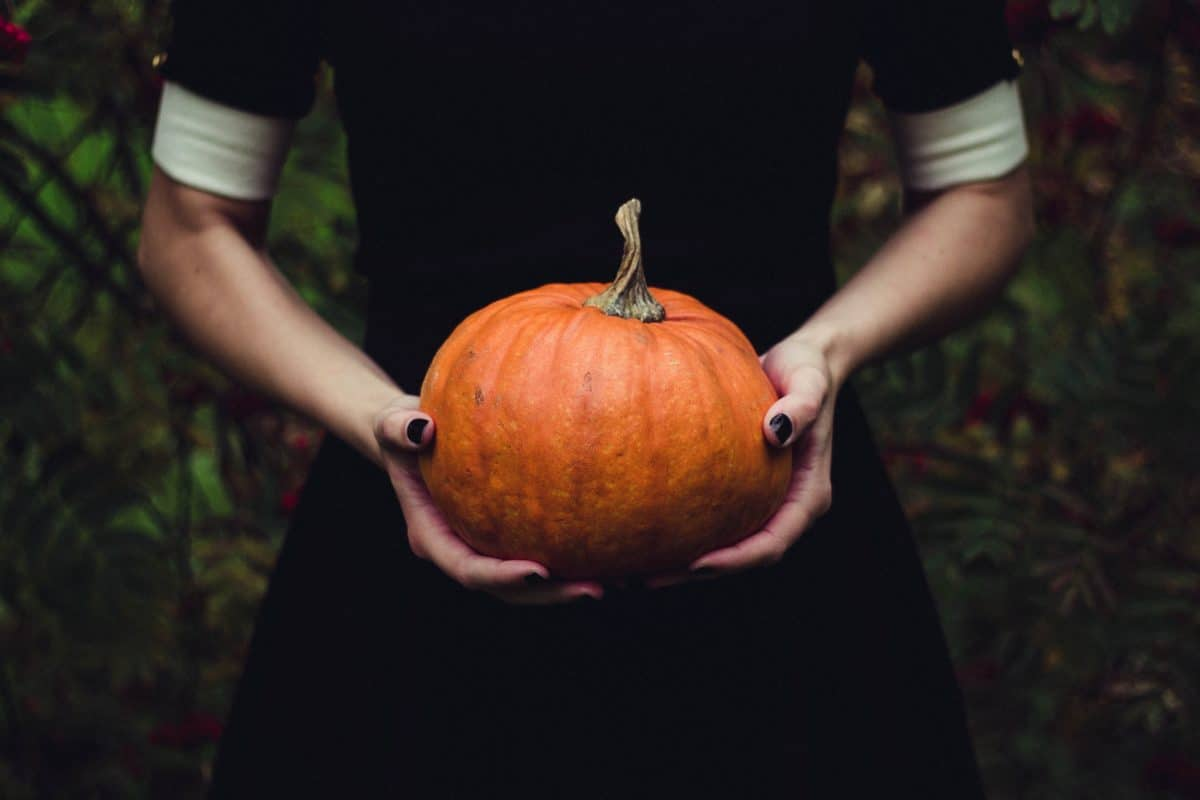person, food, pumpkin, vegetable, autumn, hand