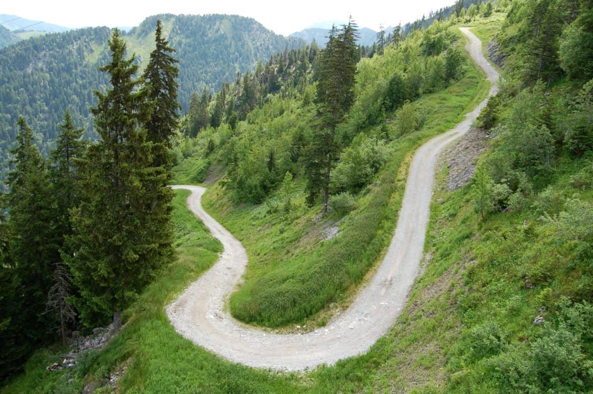 спускане, пейзаж, път, природата, дърво, дърво, планина, гора