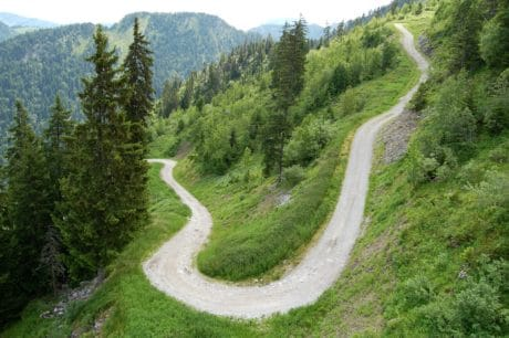 discesa libera, paesaggio, strada, natura, albero, legno, montagna, foresta
