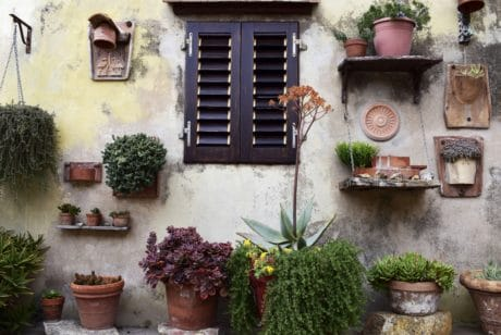 exterior, architecture, wall, window, house, flower pot, outdoor