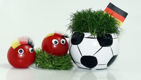 vegetable, still life, grass, flag, football, decoration