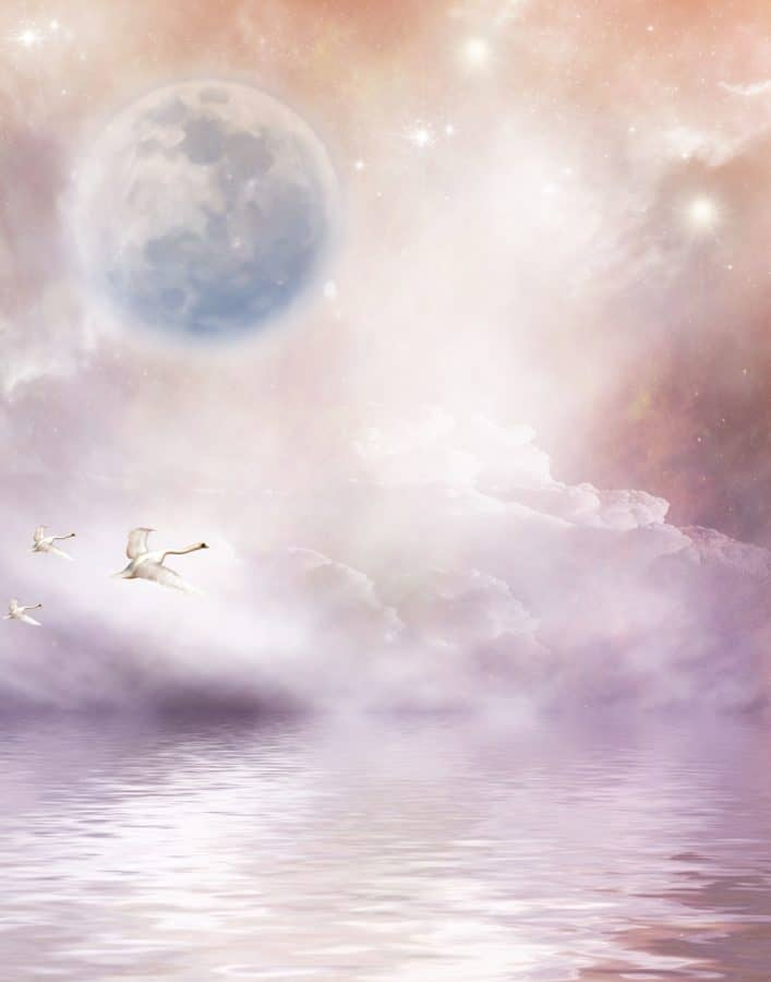 photomontage, design, creativity, swan, bird, flight, planet, star, water, sky
