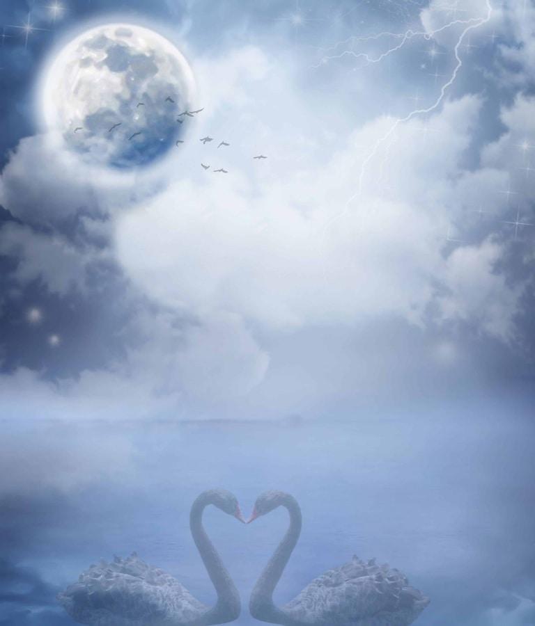 fotomontaje, creatividad, frío, noche, Luna, cisne, romántico, agua, naturaleza