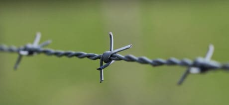 security, barbed wire, iron, fence, metal, material