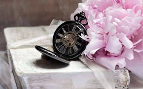 still life, decoration, object, clock, flower, book, decoration, weather
