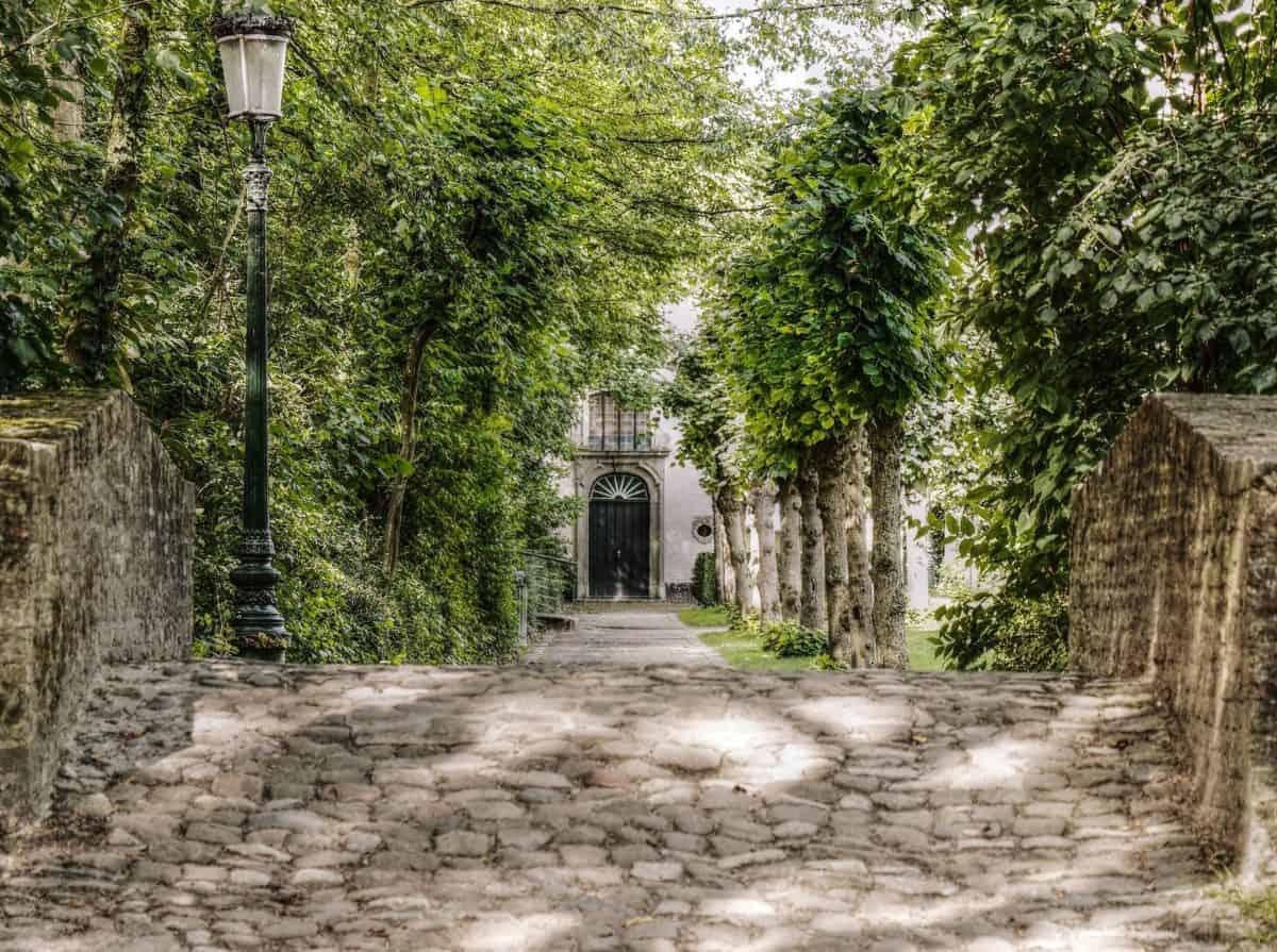 viejo, árbol, piedra, exterior, fachada, puerta, al aire libre, tierra