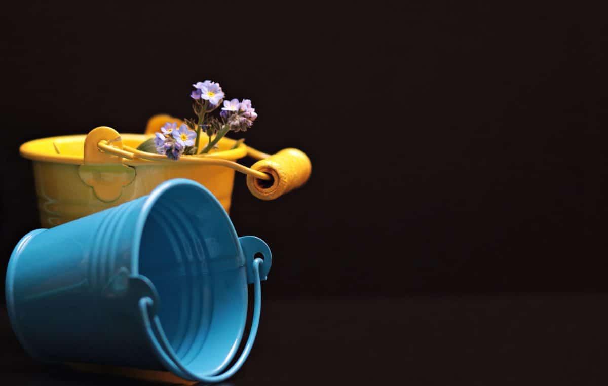 still life, studio fotografico, oggetto, secchio, metallo, fiore, decorazione, blu, giallo