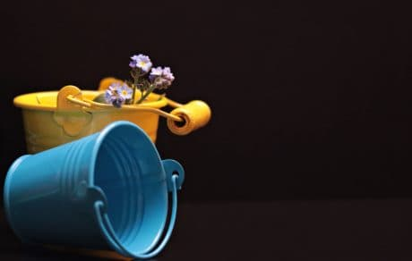 still life, photo studio, object, bucket, metal, flower, decoration, blue, yellow