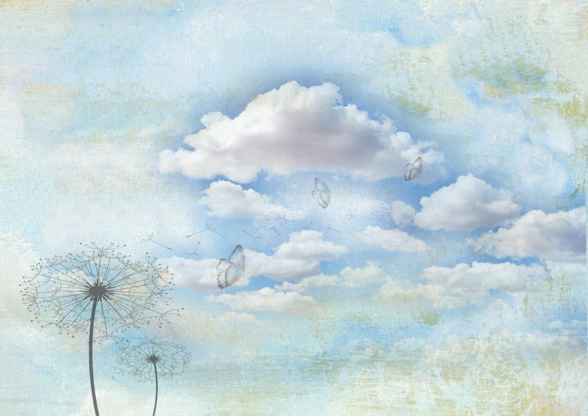 fotomontaggio, creatività, tarassaco, farfalla, cielo, disegno, arte, paesaggio