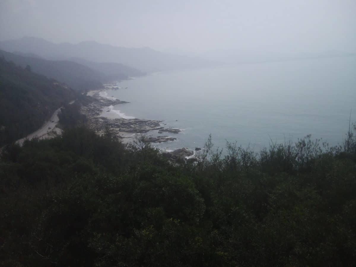 strom, pláž, voda, mlha, moře, hory, krajina, pobřeží