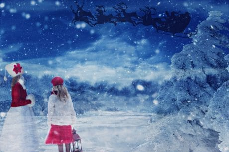 photomontage, art, cold, frost, winter, snow, ice, outdoor, painting
