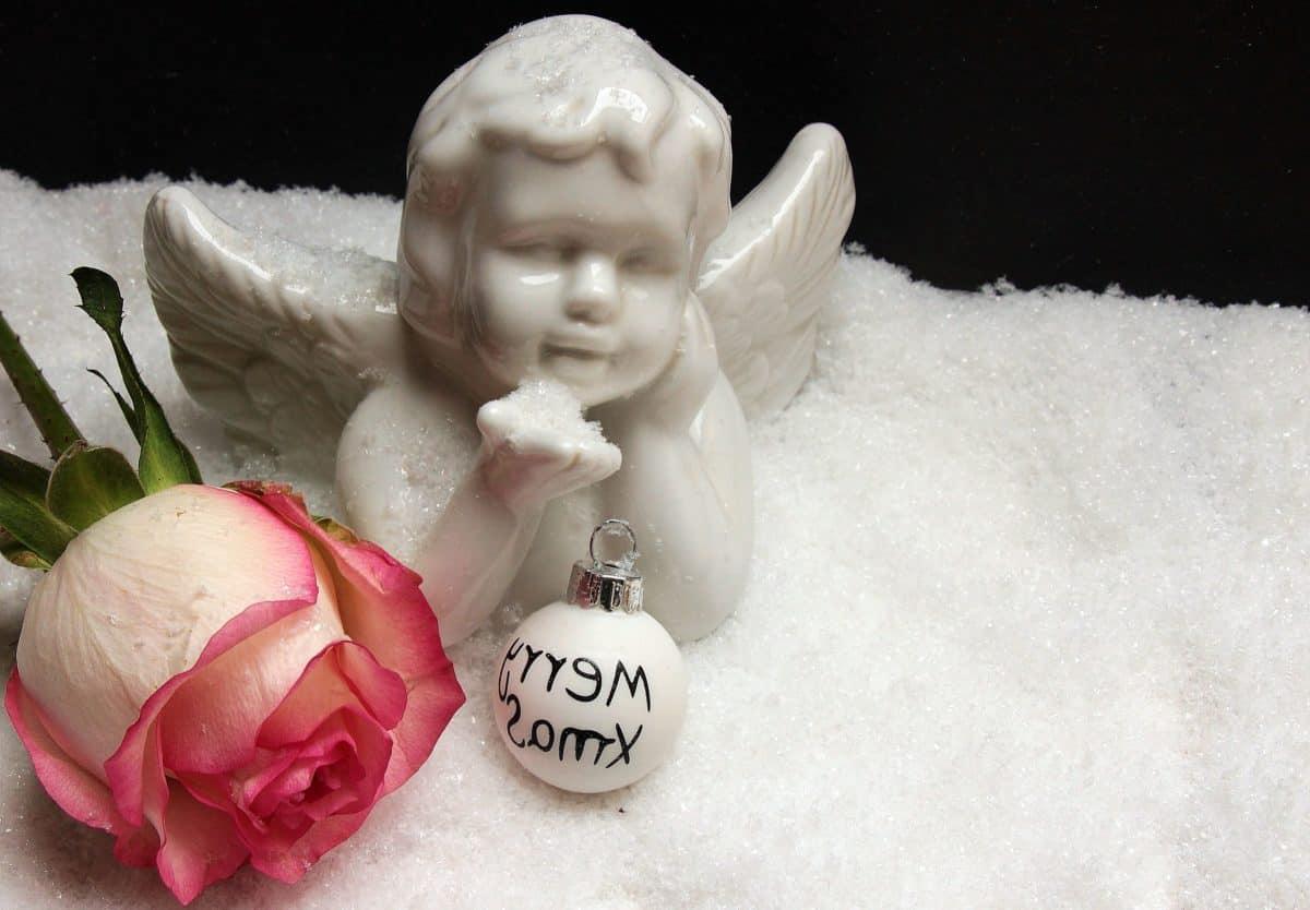 figur, kunst, angel, rose, blomst, kronblad, snøfnugg, dekorasjon, fortsatt liv