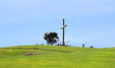 grass, cross, tree, sky, christianity, landscape, field, meadow, summer