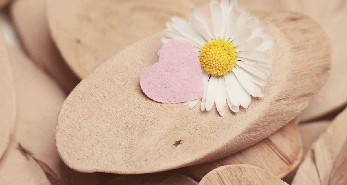 still life, decoration, wood, flower, petal, heart, love, spring, romance