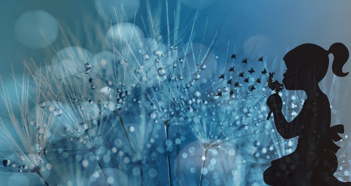 fotomontaje, lluvia, abstracto, mojado, niña, sombra, flor