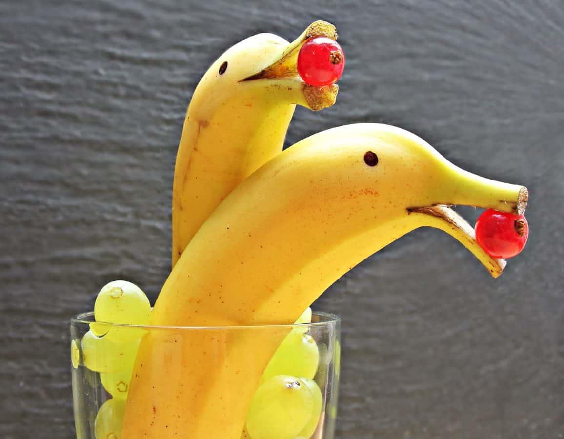 banan, frugt, kunst, delfin, solbær, dekoration, mad