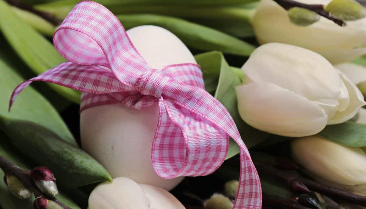 Oeuf de Pâques, nature, ruban, tissu, décoration, oeufs, fleur