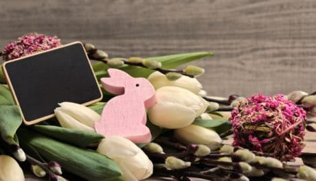 still life, decoration, device, ears, flower, rabbit, eletronics, leaf, spring