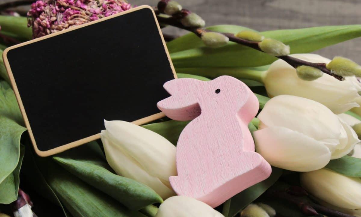 cvijet, mrtva priroda, zec, igračka, objekt, dekoracija, uređaj, Uskrs