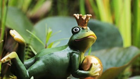 toy, object, frog, amphibian, figure, crown, animal, wildlife