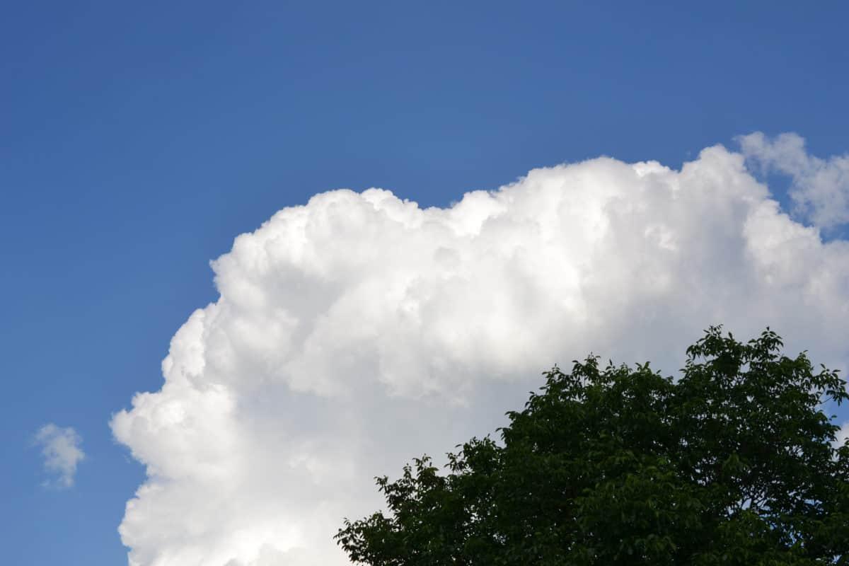 το καλοκαίρι, φύση, μπλε του ουρανού, τοπίο, ατμόσφαιρα, σύννεφο, δέντρο