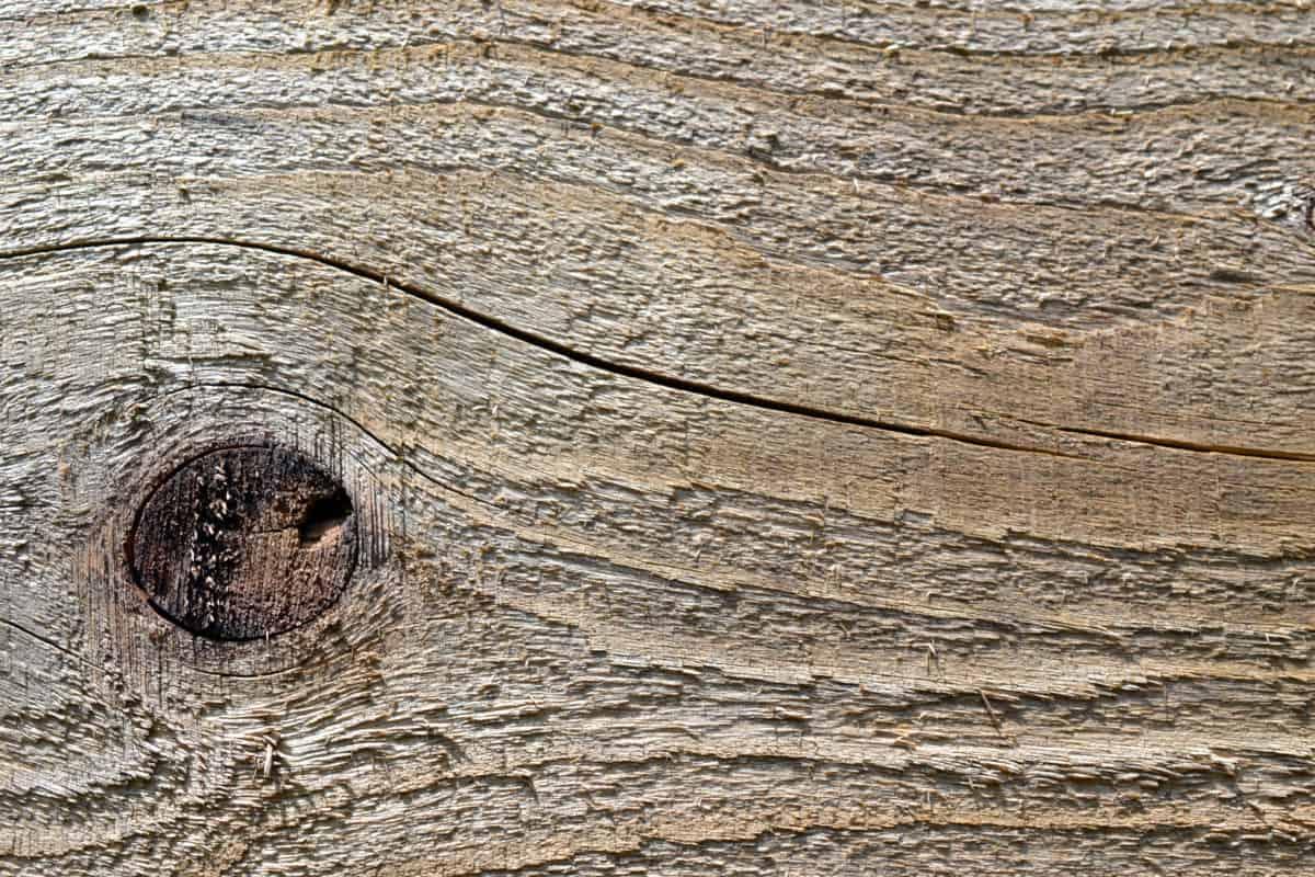 wood knot, hardwood, texture, wooden, old, pattern