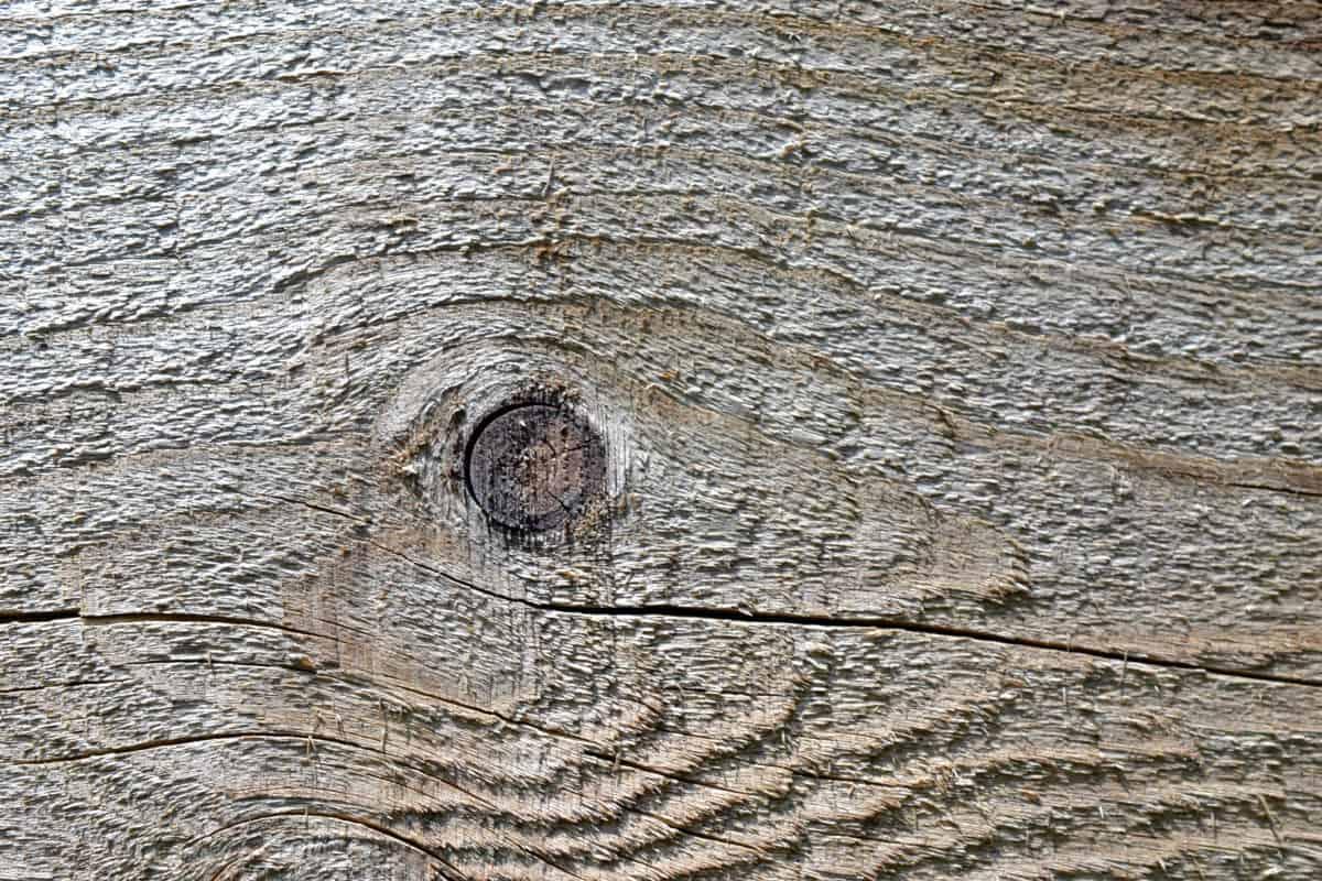 디자인, 나무 매듭, 소재, 표면, 패턴, 나무, 질감, 나무