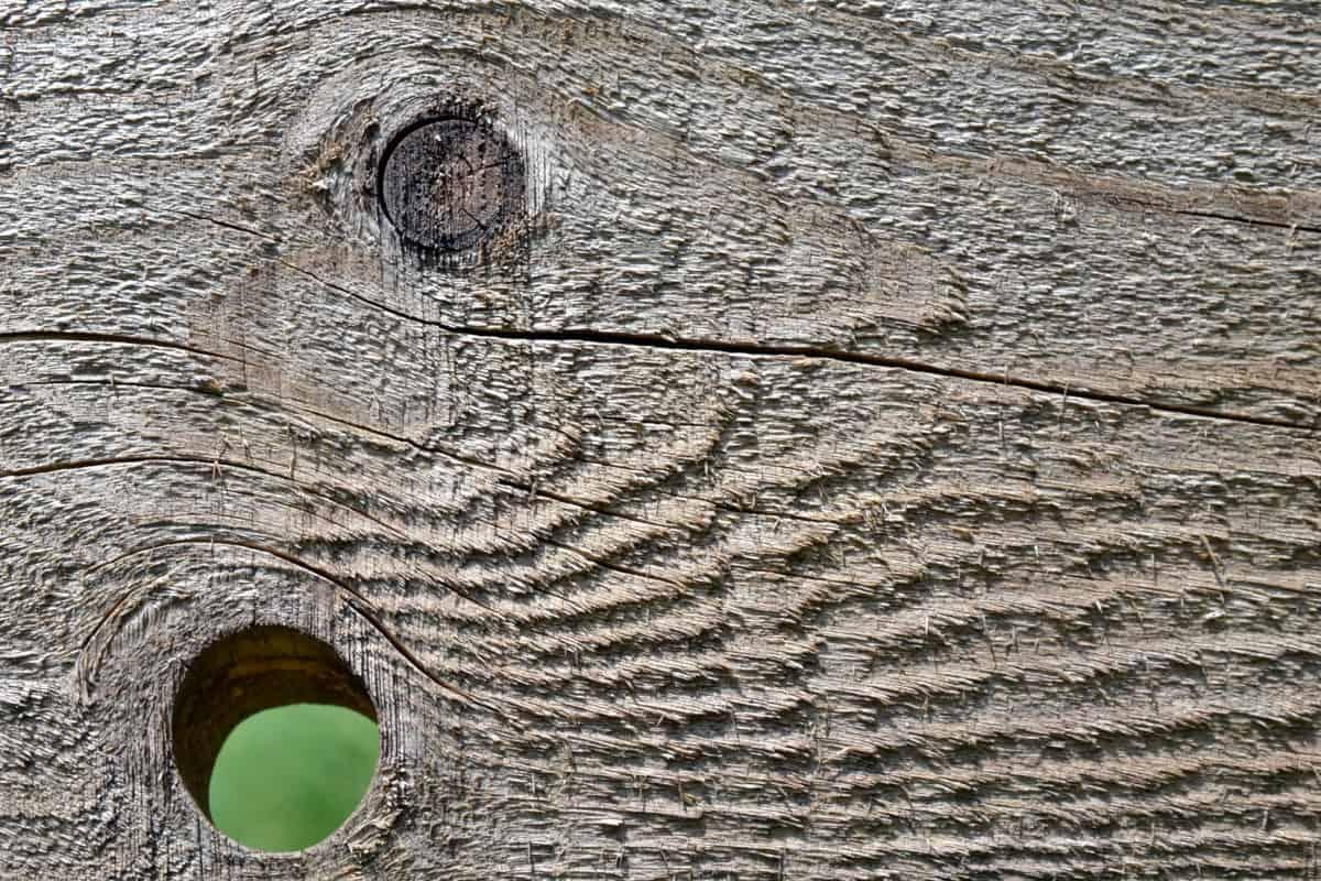 nodo, natura, materiale, superficie, modello, old, di legno dettaglio foro, marrone,