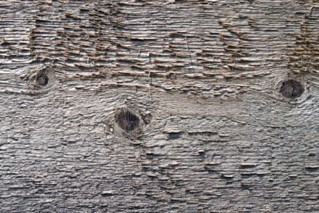 texture, pattern, wood knot, hardwood, material, surface, material