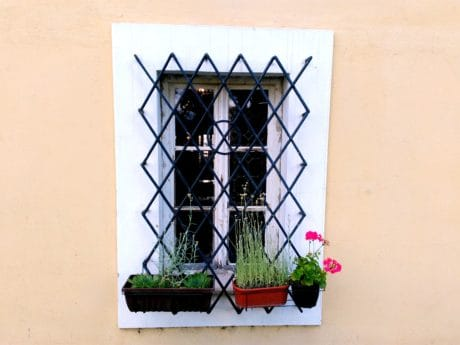 house, architecture, window, wall, old, flower, cast iron, metal, security