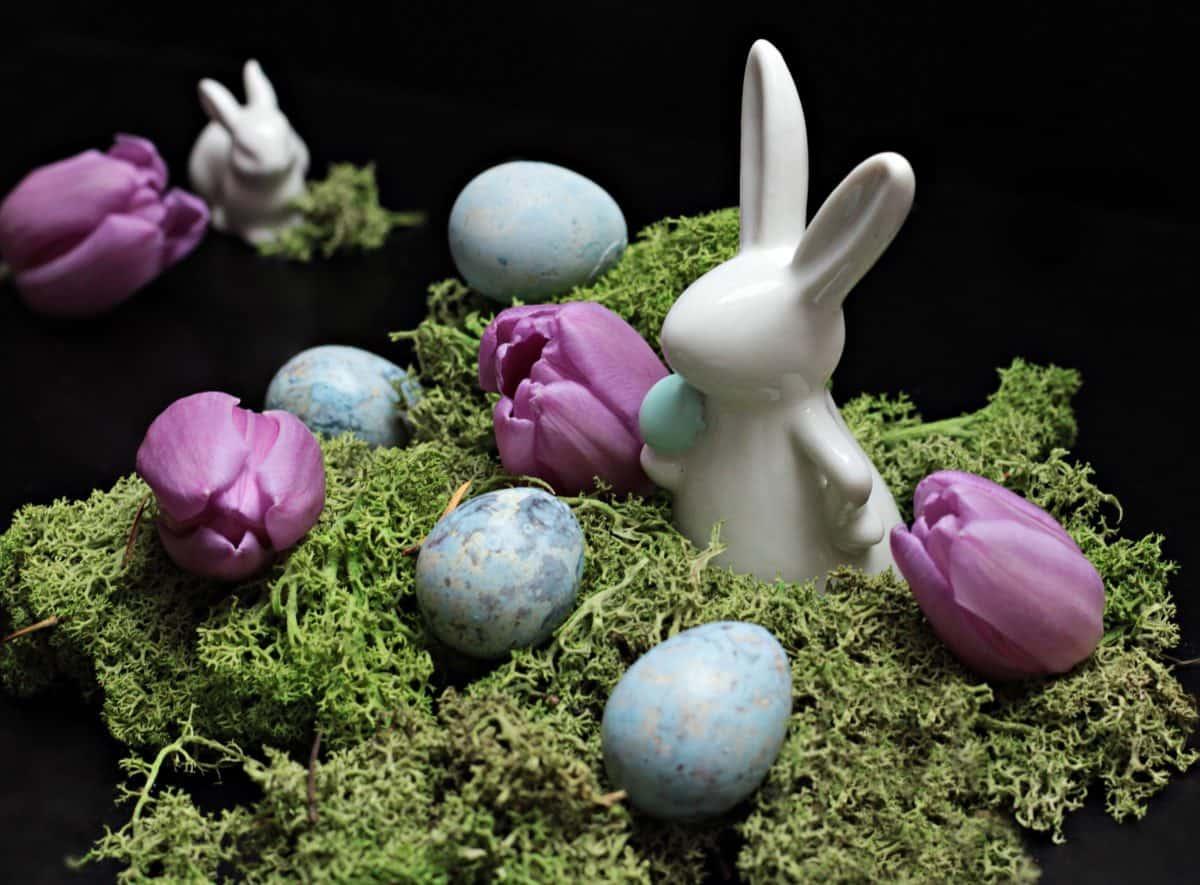 stadig liv, påskeæg, ferie, moss, dekoration, blomst