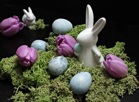 still life, Easter egg, holiday, moss, decoration, flower