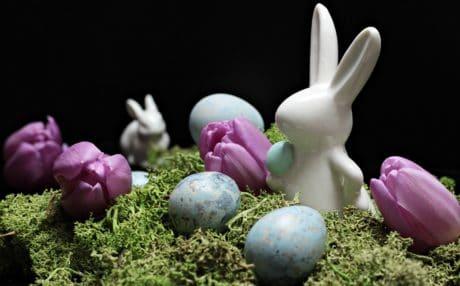 Moss, dekorace, dekorace, zátiší, květiny, koš, vejce, Velikonoce, svátek