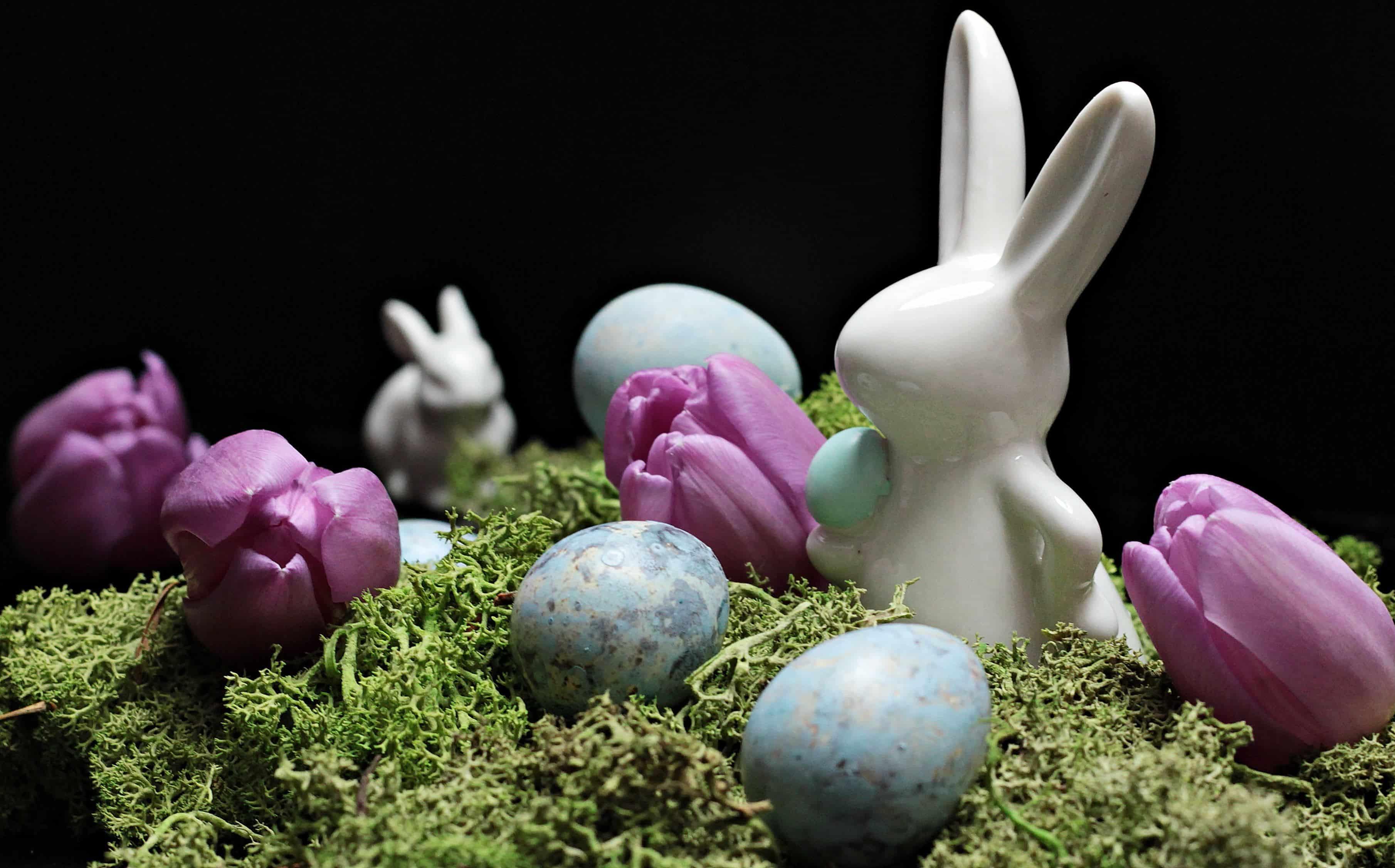 5 tuuman munaa PIC