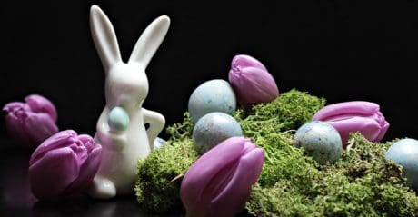 Easter, egg, flower, still life, decoration, rabbit, figure