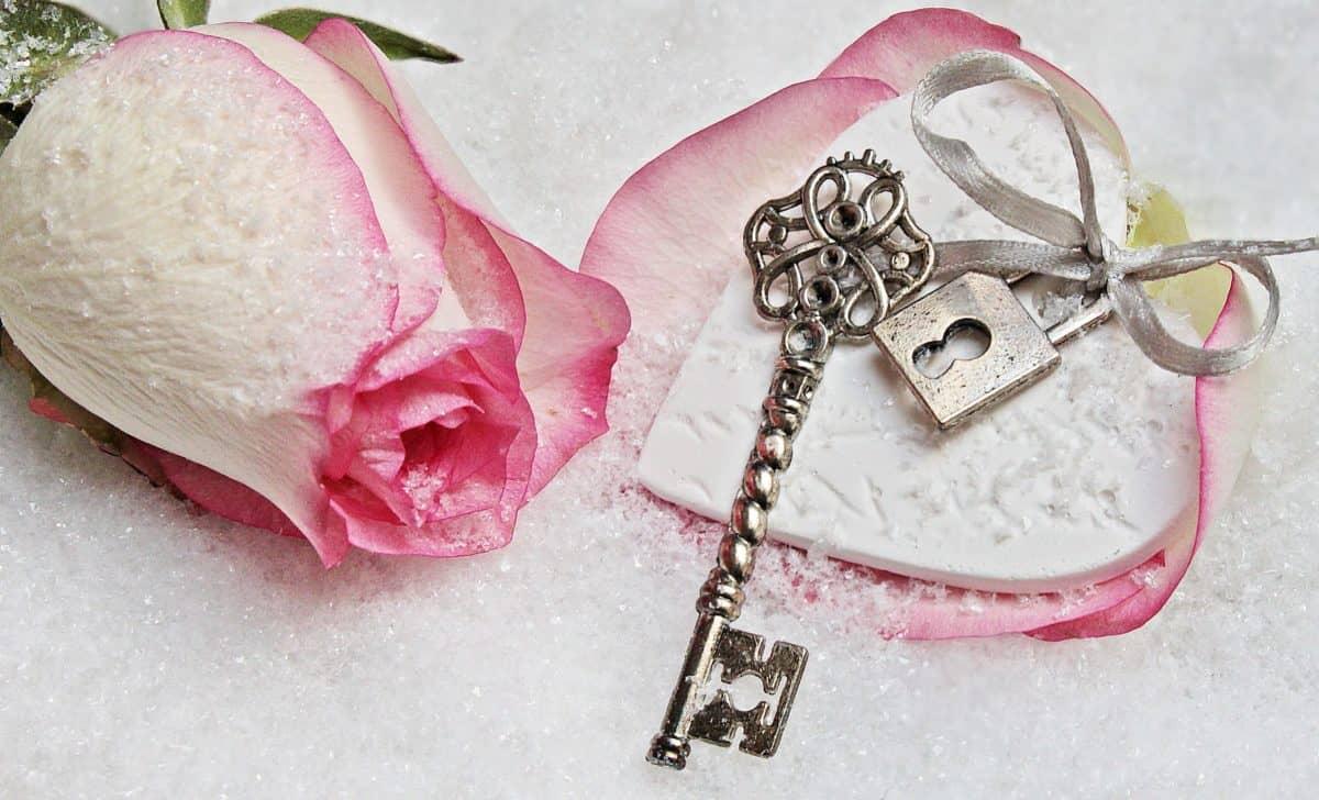 rose, petals, love, jewelry, key, metal, plant, romance